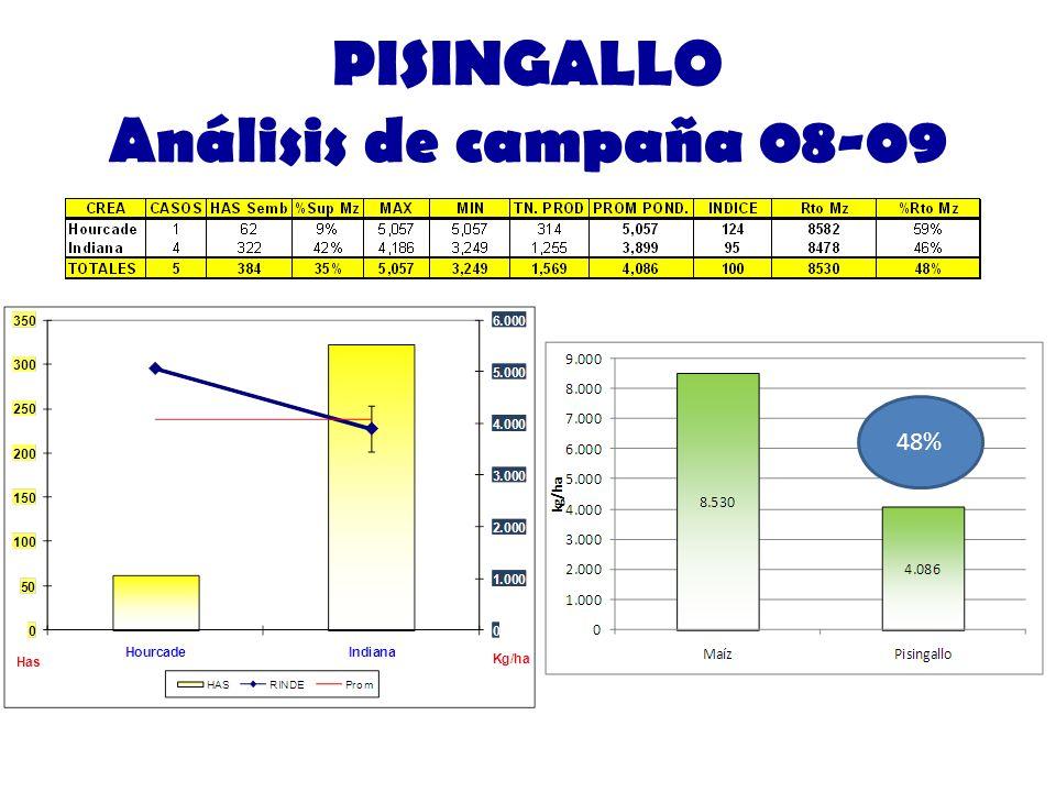 PISINGALLO Análisis de campaña 08-09
