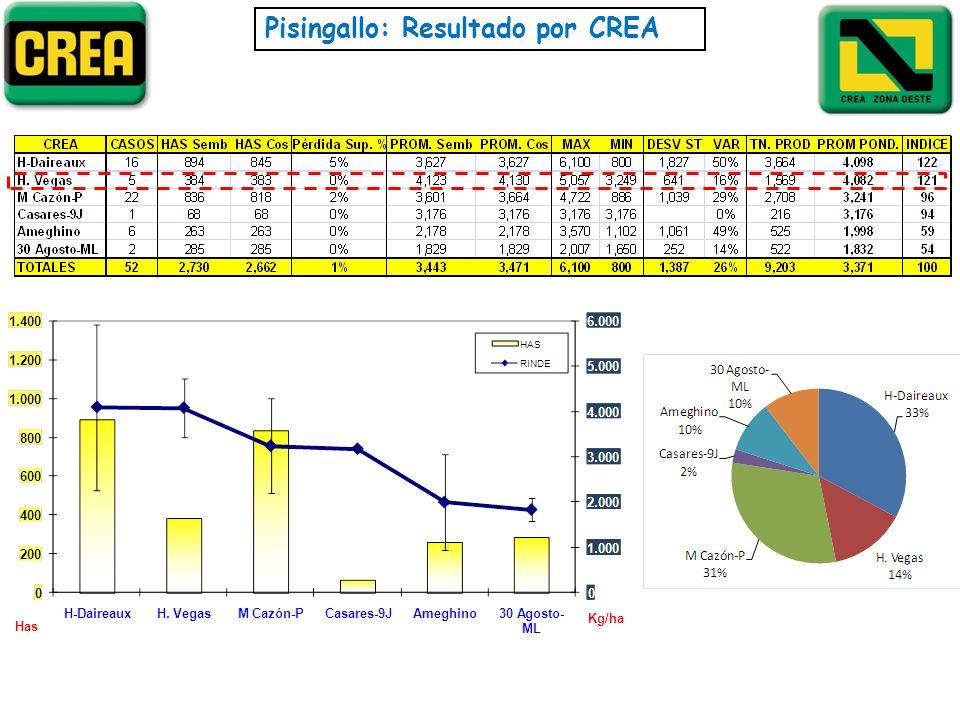 Pisingallo: Resultado por CREA