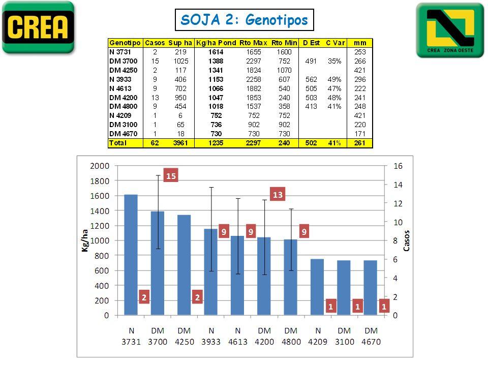 SOJA 2: Genotipos