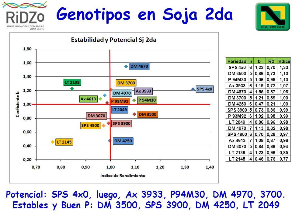 Genotipos en Soja 2da Variedad. n. b. R2. Indice. SPS 4x0. 6. 1,22. 0,70. 1,33. DM 3500. 5.