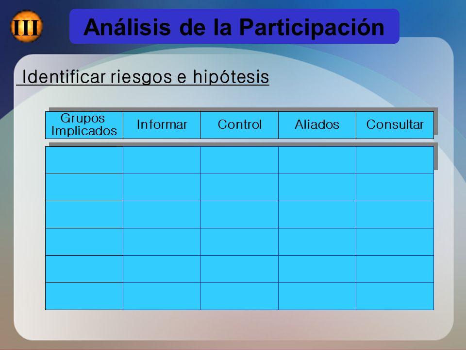 Análisis de la Participación Identificar riesgos e hipótesis