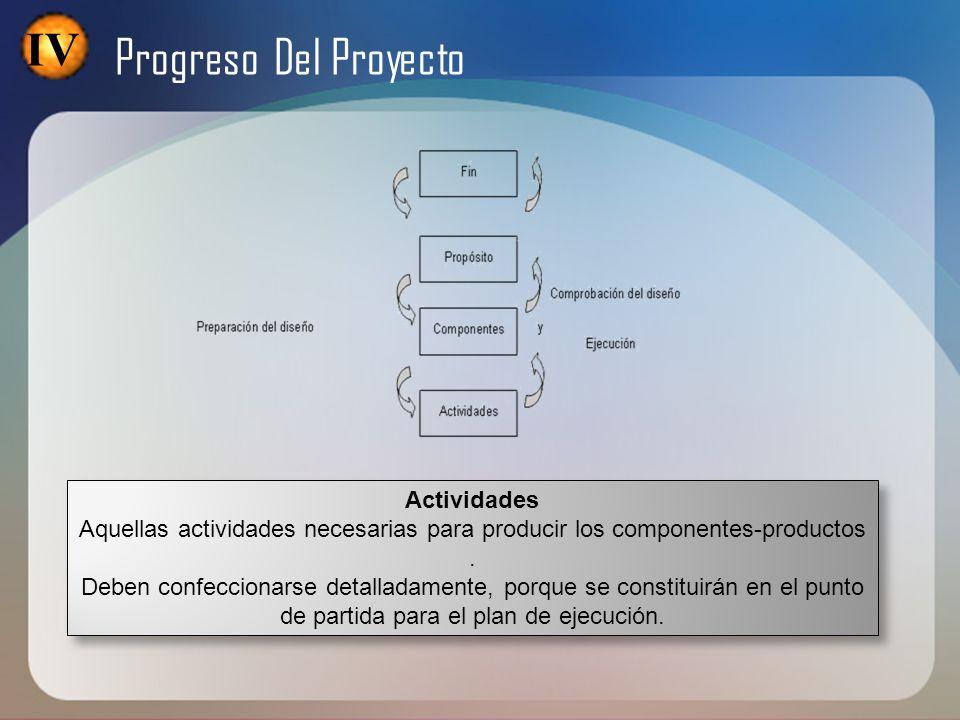 IV Progreso Del Proyecto Actividades