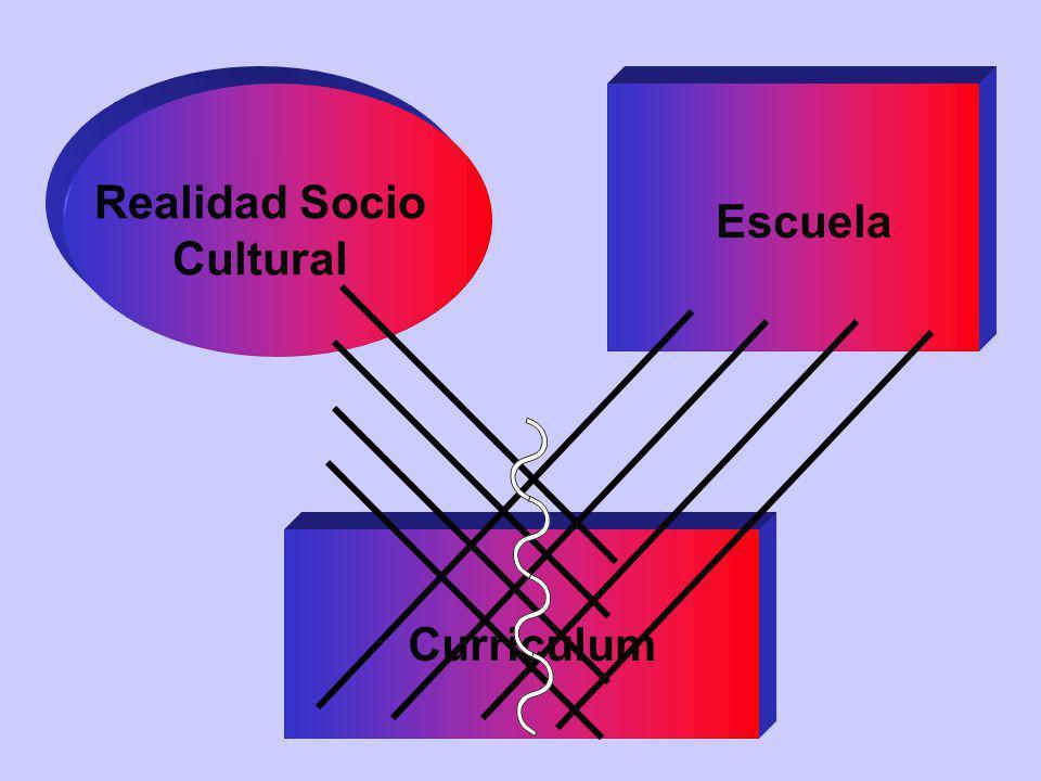 Realidad Socio Cultural Escuela Curriculum