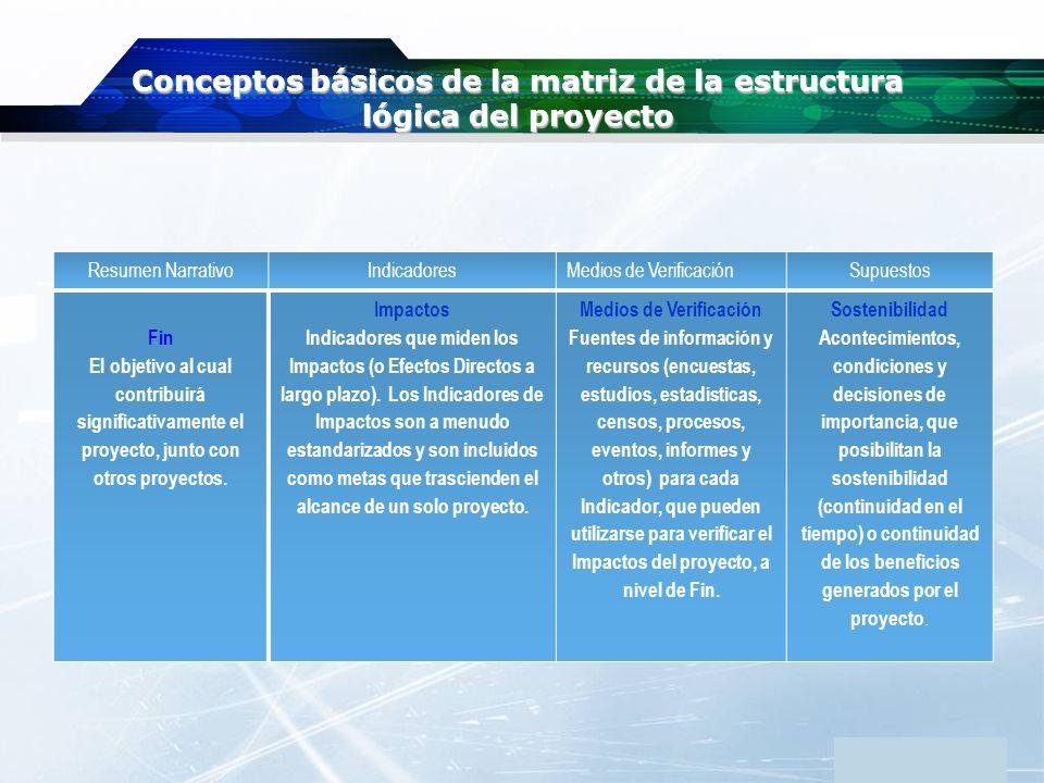 Conceptos básicos de la matriz de la estructura lógica del proyecto