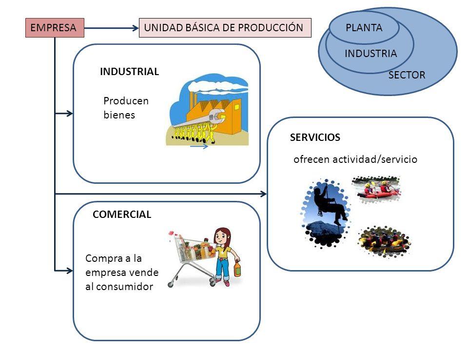 SECTOR PLANTA. INDUSTRIA. EMPRESA. UNIDAD BÁSICA DE PRODUCCIÓN. INDUSTRIAL. Producen bienes. SERVICIOS.