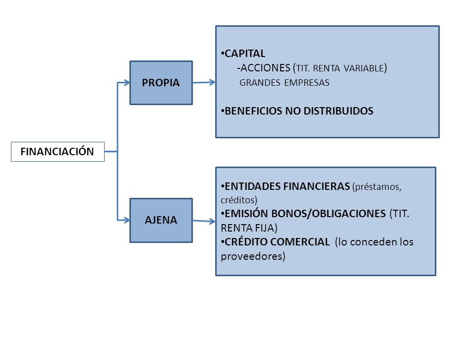 CAPITAL-ACCIONES (TIT. RENTA VARIABLE) GRANDES EMPRESAS. BENEFICIOS NO DISTRIBUIDOS. PROPIA. FINANCIACIÓN.