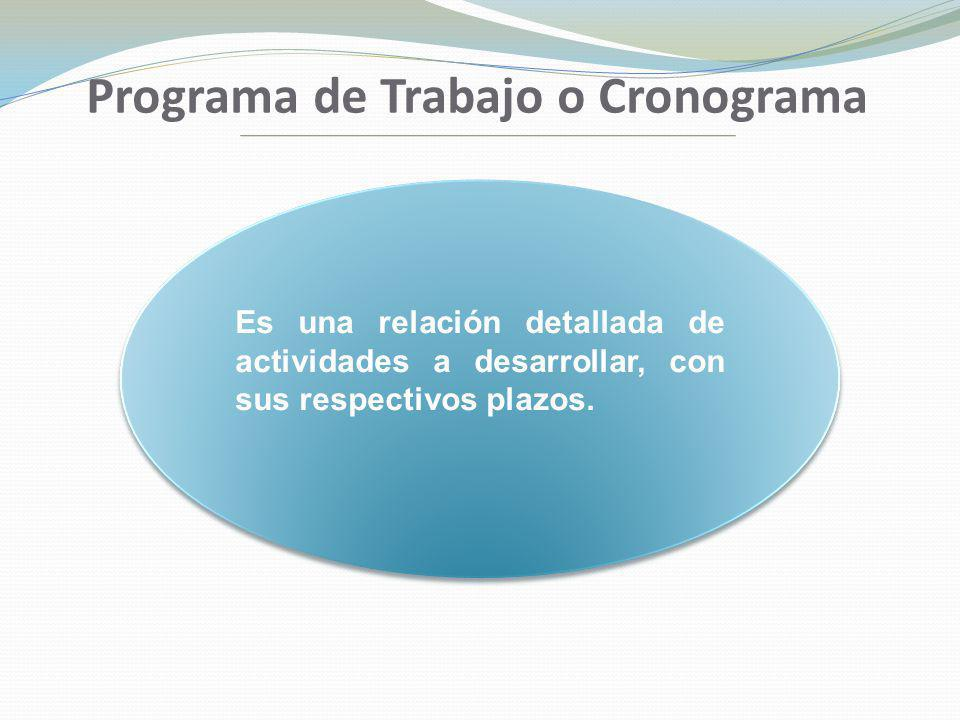 Programa de Trabajo o Cronograma