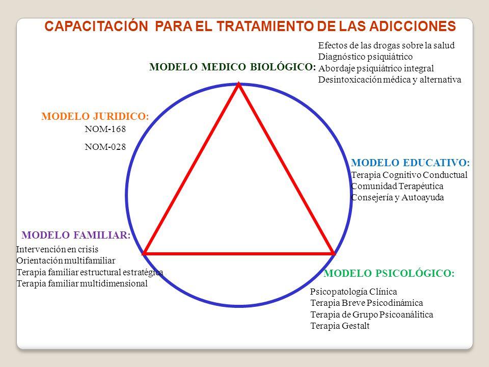 CAPACITACIÓN PARA EL TRATAMIENTO DE LAS ADICCIONES