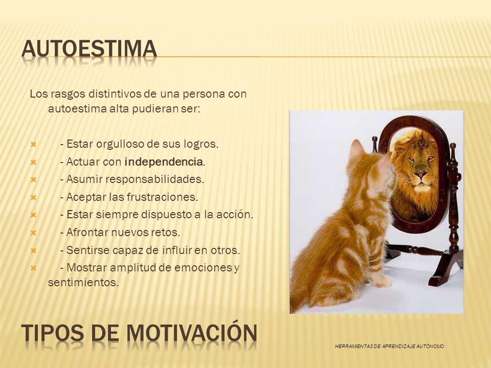 AUTOESTIMA TIPOS DE MOTIVACIÓN