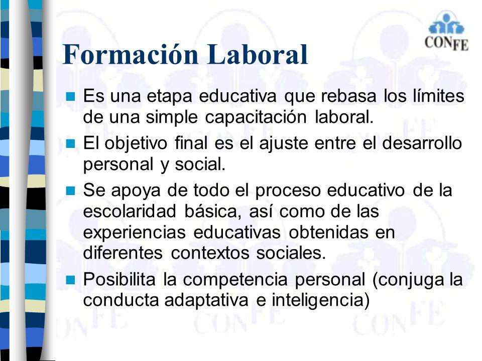 Formación Laboral Es una etapa educativa que rebasa los límites de una simple capacitación laboral.