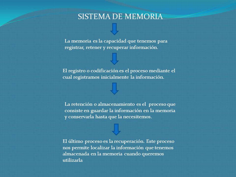 SISTEMA DE MEMORIA La memoria es la capacidad que tenemos para