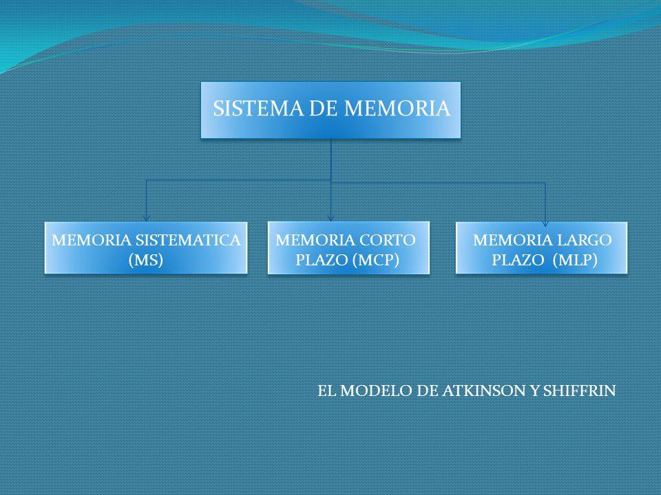 SISTEMA DE MEMORIA MEMORIA SISTEMATICA (MS) MEMORIA CORTO PLAZO (MCP)