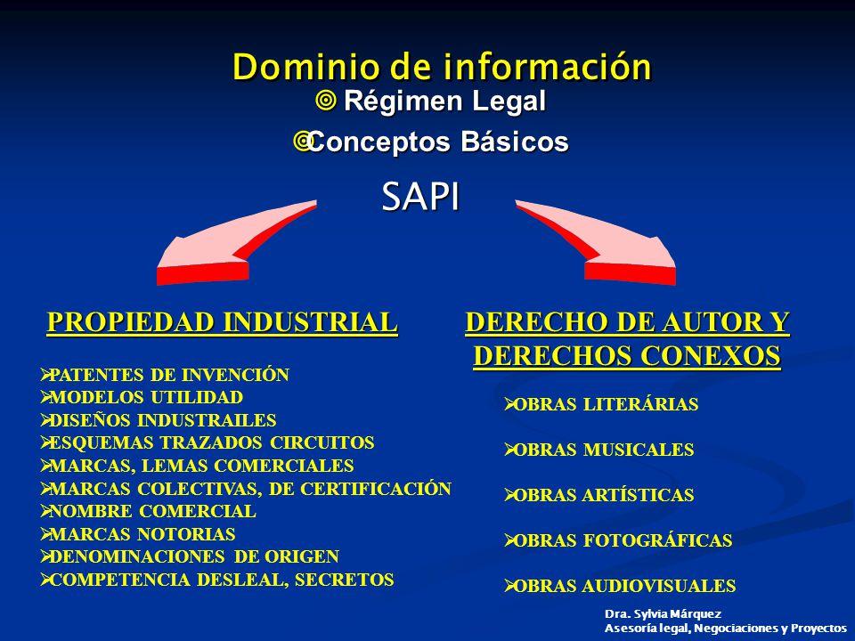 Dominio de información
