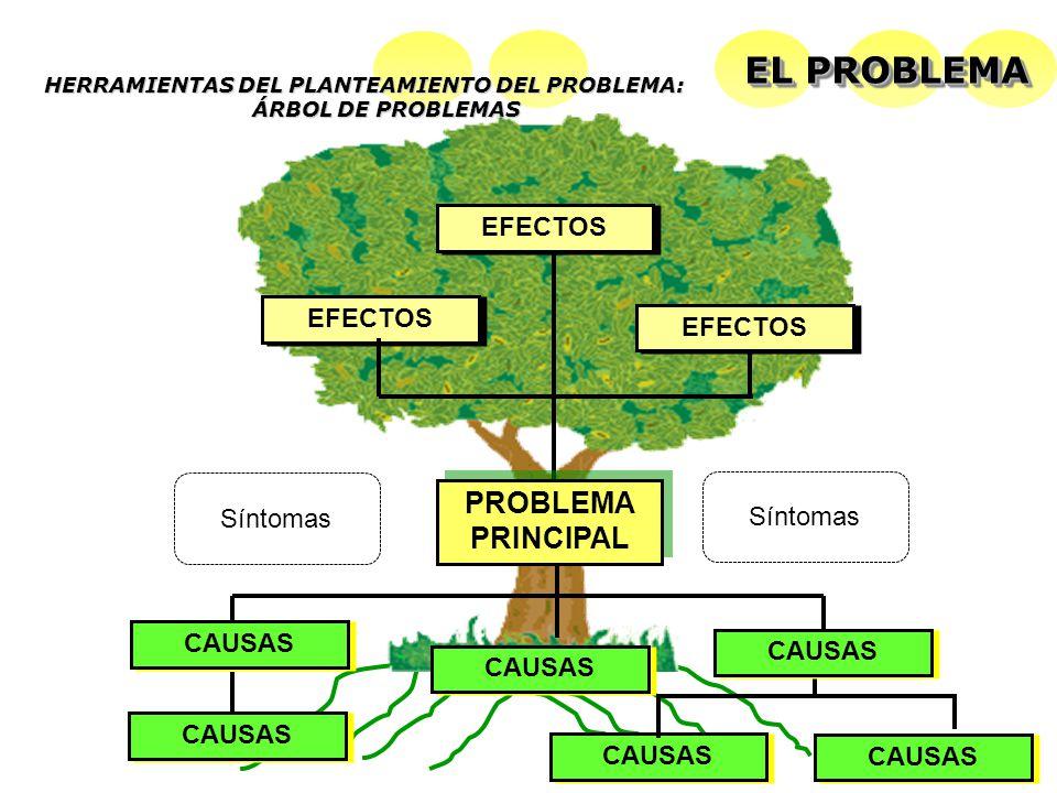 HERRAMIENTAS DEL PLANTEAMIENTO DEL PROBLEMA: ÁRBOL DE PROBLEMAS