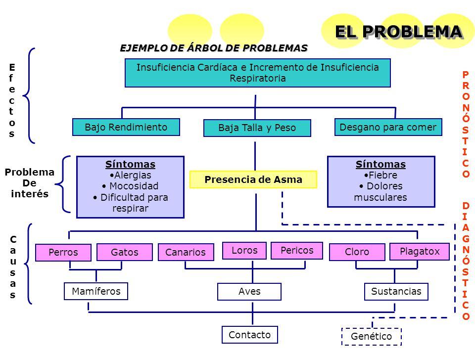 EL PROBLEMA EJEMPLO DE ÁRBOL DE PROBLEMAS