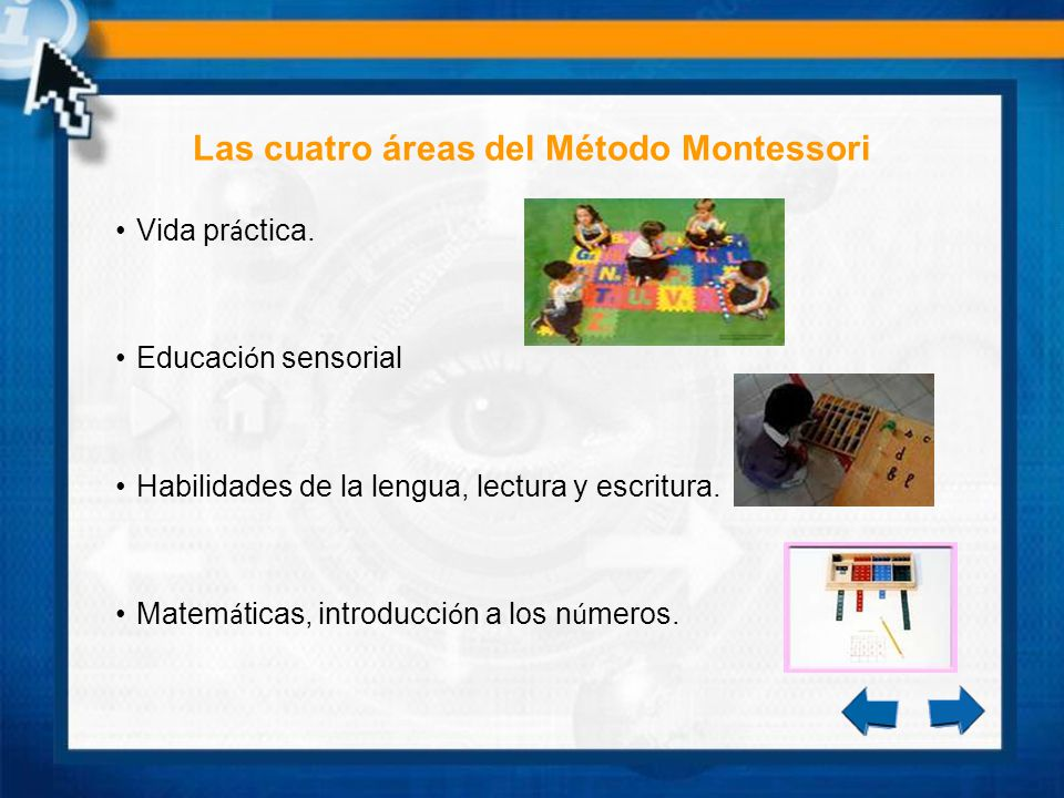 Las cuatro áreas del Método Montessori