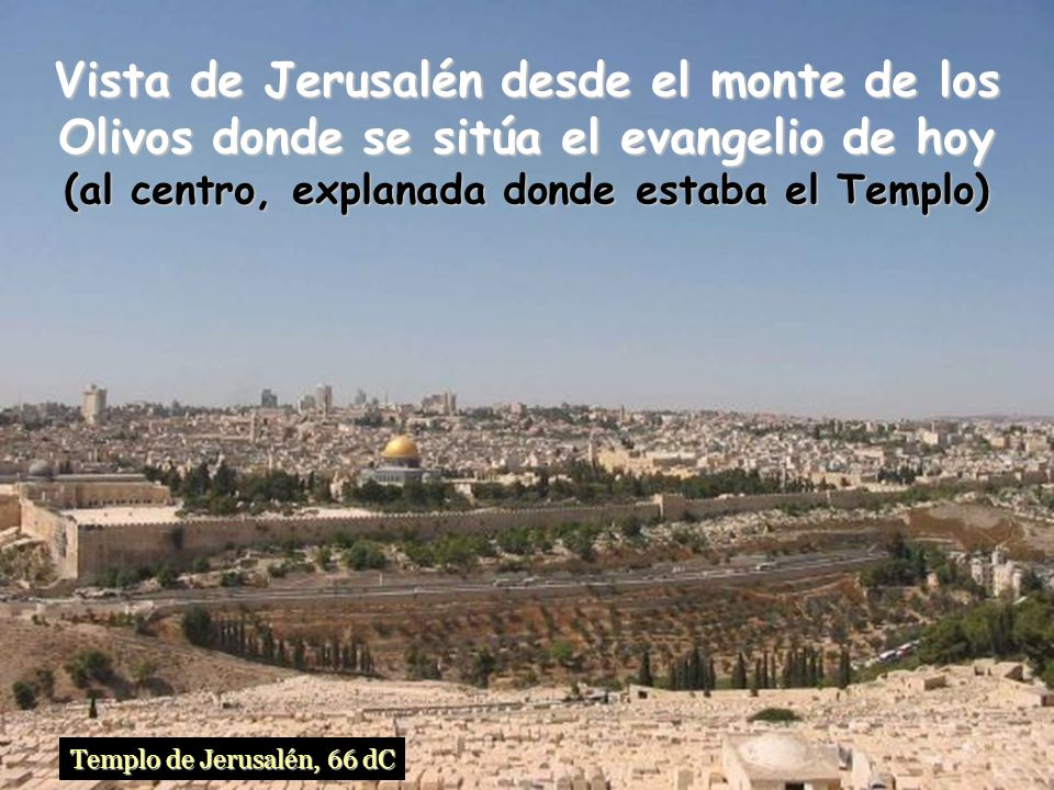 Vista de Jerusalén desde el monte de los Olivos donde se sitúa el evangelio de hoy (al centro, explanada donde estaba el Templo)
