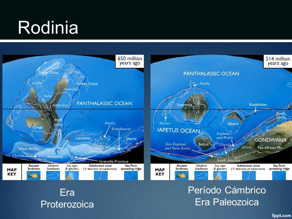 Rodinia Período Cámbrico Era Paleozoica Era Proterozoica
