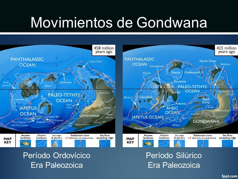 Movimientos de Gondwana