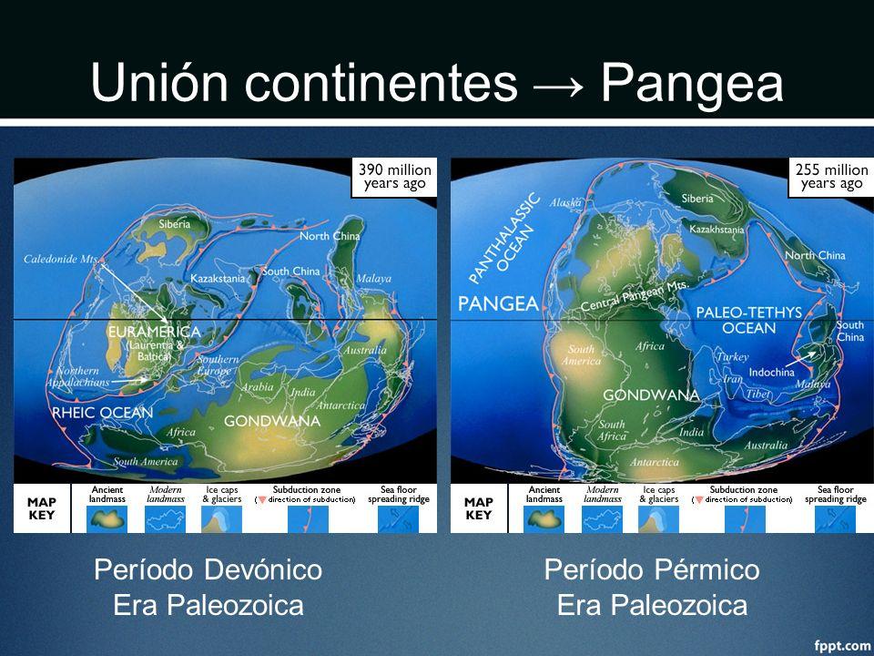 Unión continentes → Pangea