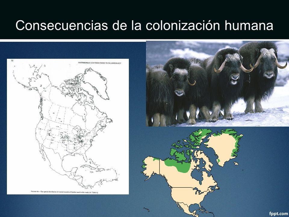 Consecuencias de la colonización humana