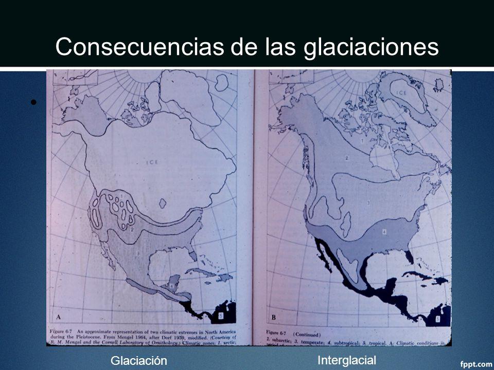 Consecuencias de las glaciaciones