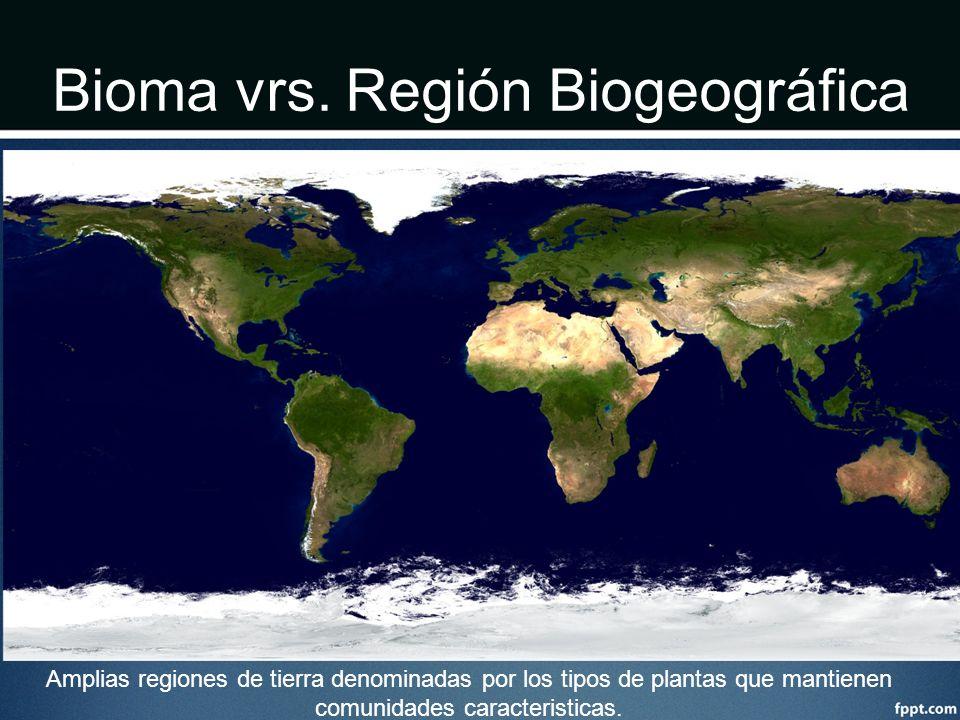 Bioma vrs. Región Biogeográfica