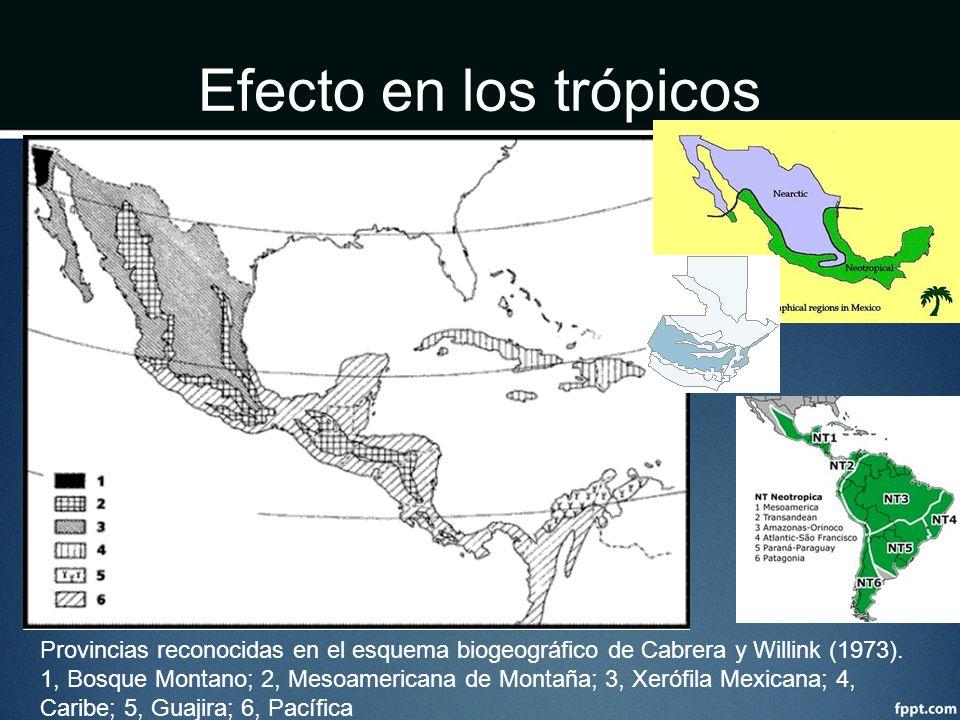 Efecto en los trópicos