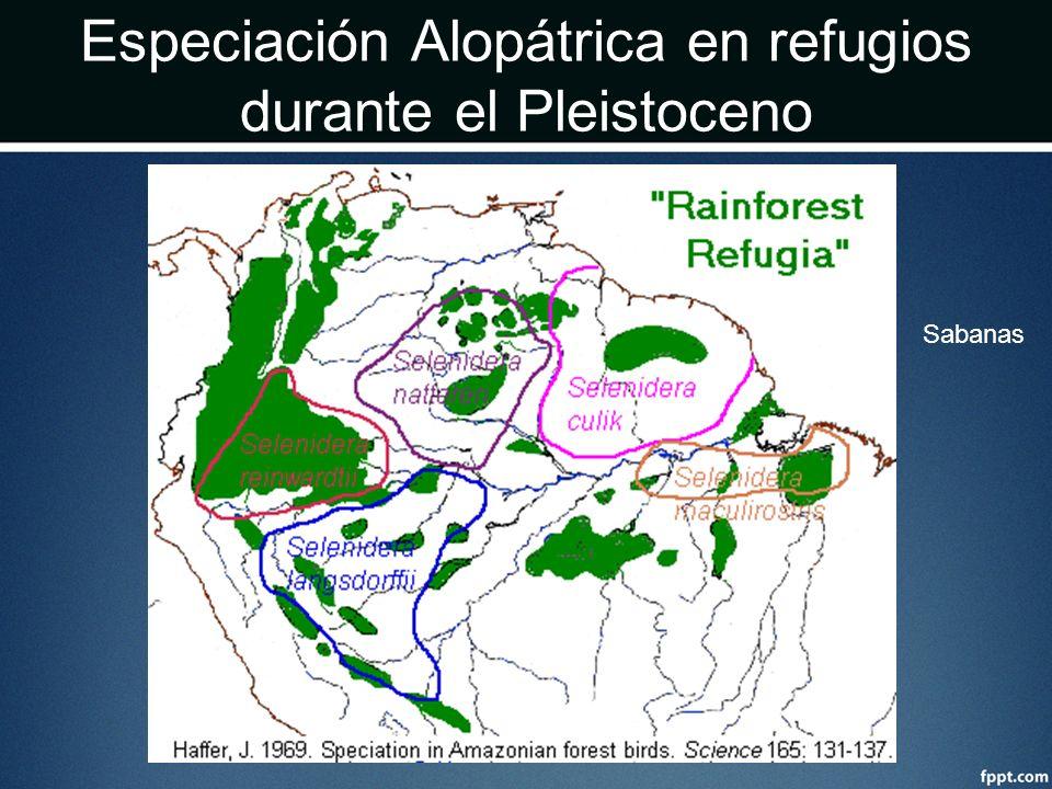Especiación Alopátrica en refugios durante el Pleistoceno