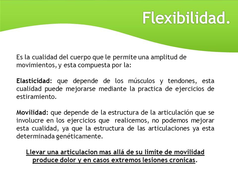 Flexibilidad. Es la cualidad del cuerpo que le permite una amplitud de movimientos, y esta compuesta por la: