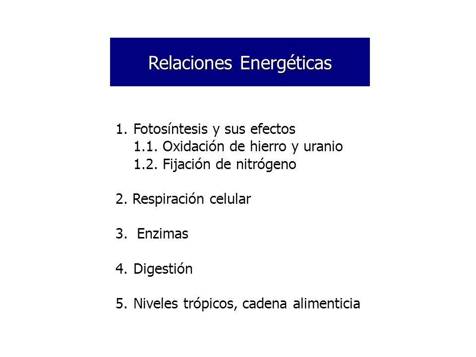 Relaciones Energéticas
