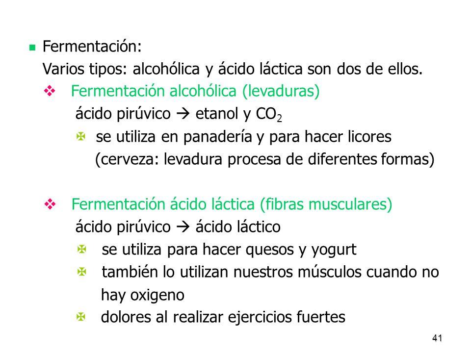 Varios tipos: alcohólica y ácido láctica son dos de ellos.