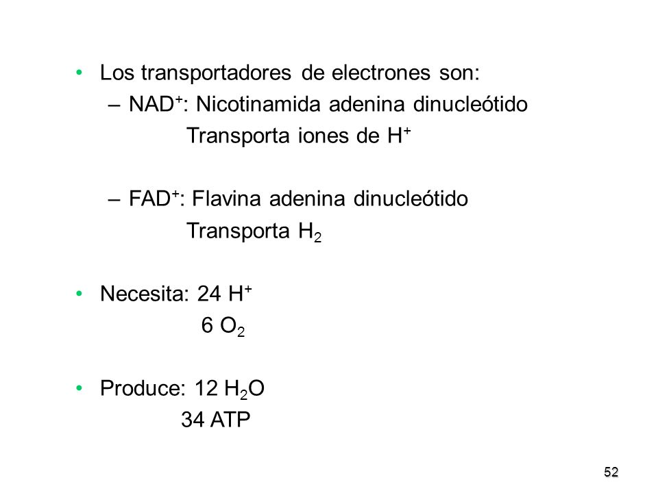 Los transportadores de electrones son:
