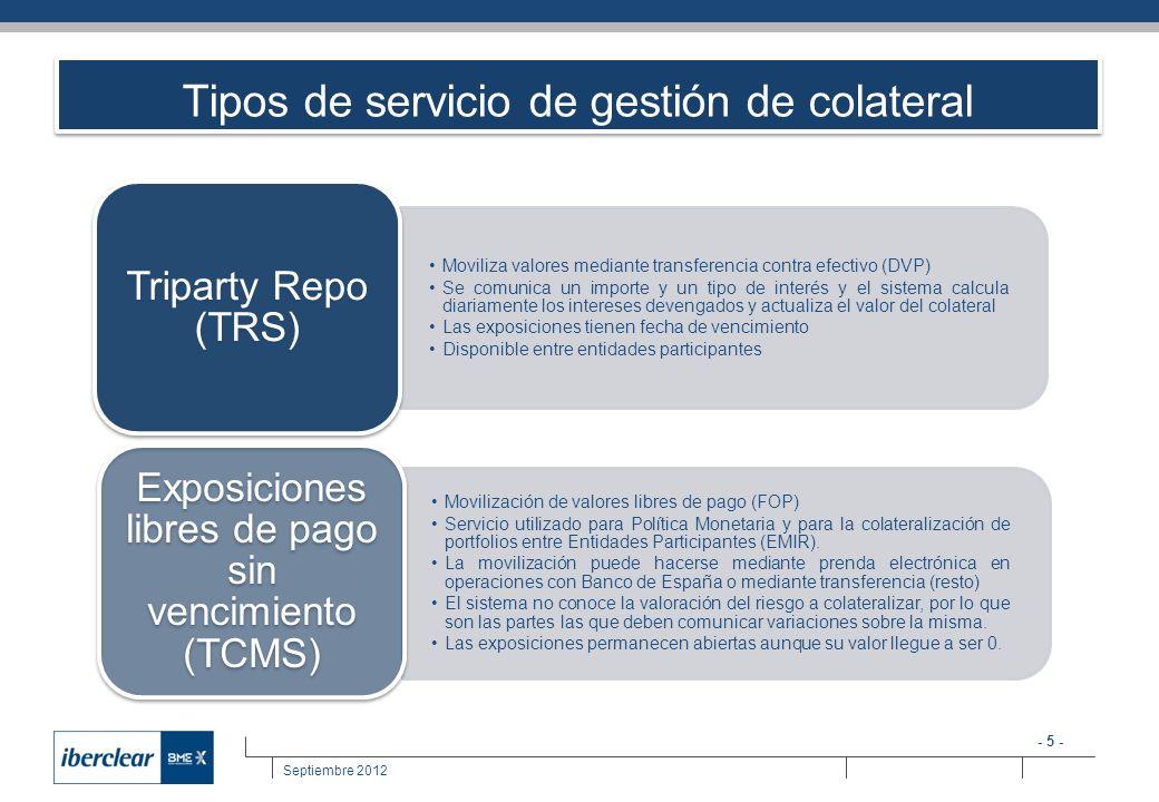 Tipos de servicio de gestión de colateral