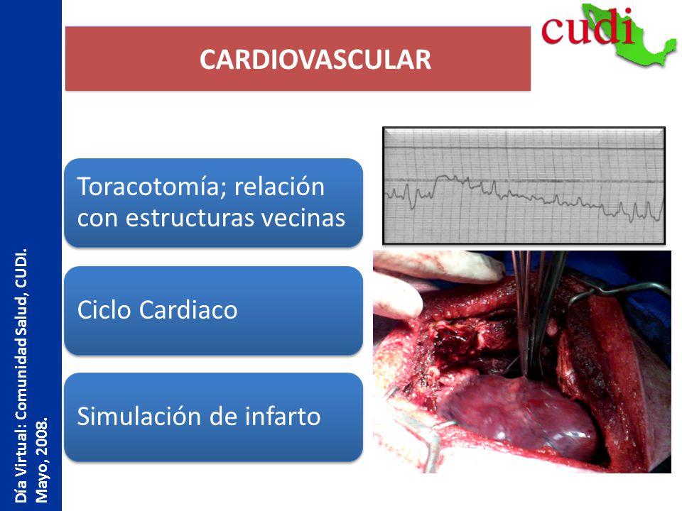 CARDIOVASCULAR Día Virtual: Comunidad Salud, CUDI. Mayo, 2008.