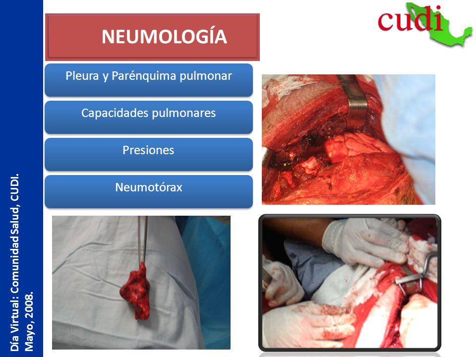 NEUMOLOGÍA Pleura y Parénquima pulmonar Capacidades pulmonares