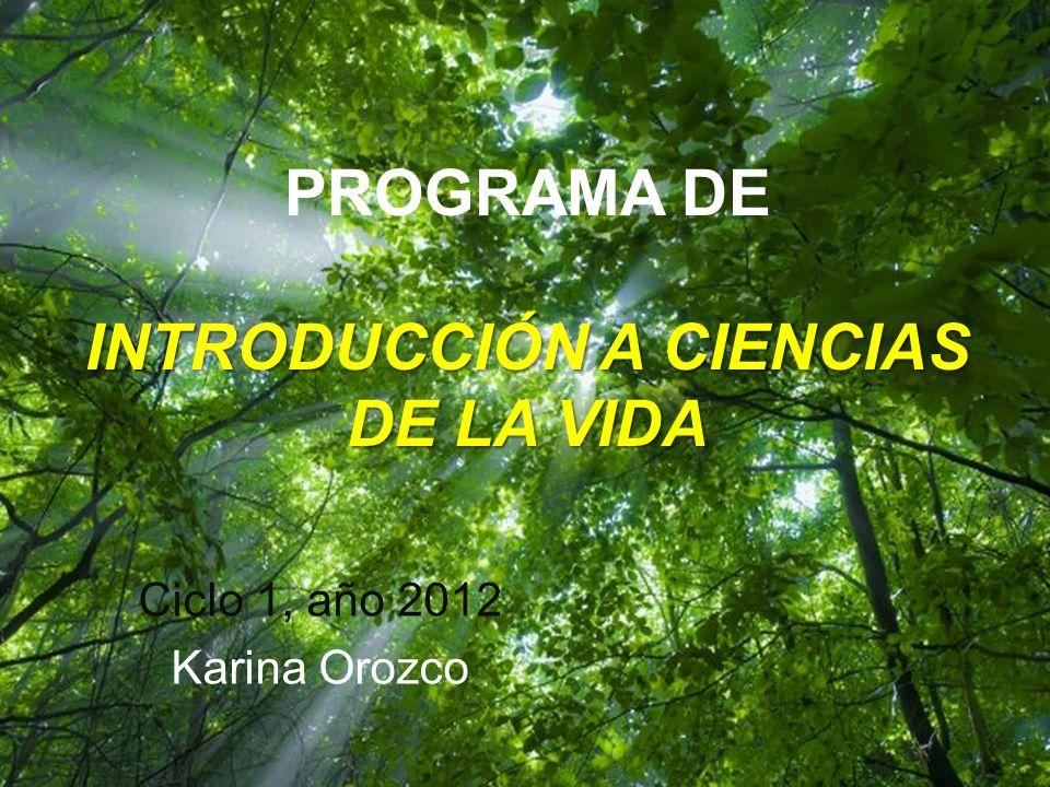 Ciclo 1, año 2012 Karina Orozco