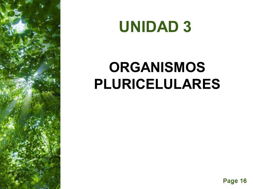 ORGANISMOS PLURICELULARES