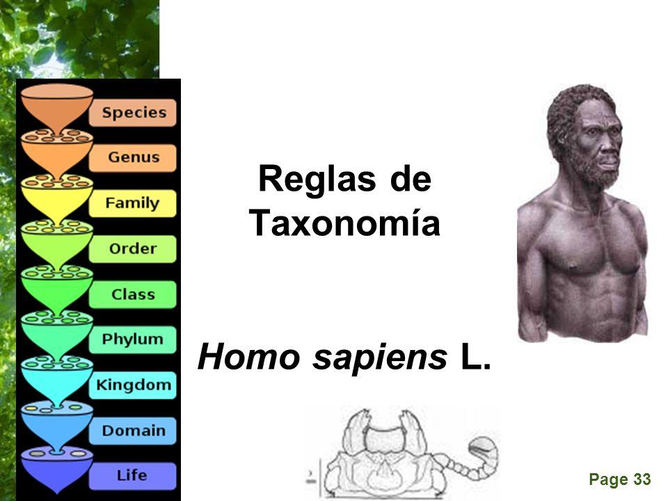 Reglas de Taxonomía Homo sapiens L. Passalus interruptus (L.)