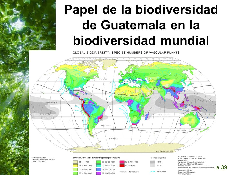 Papel de la biodiversidad de Guatemala en la biodiversidad mundial