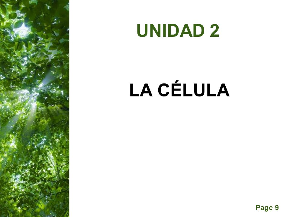 UNIDAD 2 LA CÉLULA
