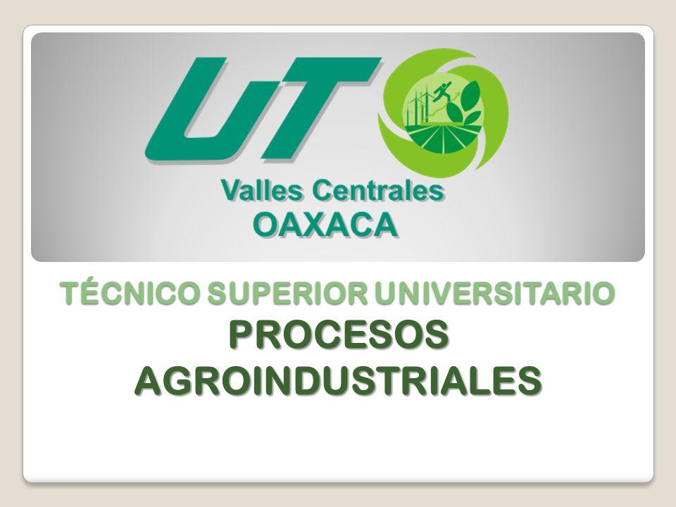 TÉCNICO SUPERIOR UNIVERSITARIO PROCESOS AGROINDUSTRIALES