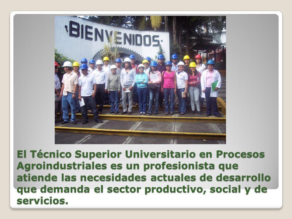 El Técnico Superior Universitario en Procesos Agroindustriales es un profesionista que atiende las necesidades actuales de desarrollo que demanda el sector productivo, social y de servicios.