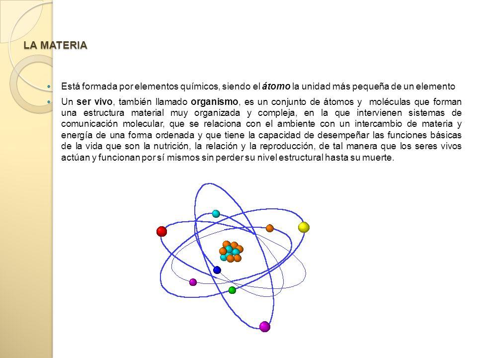 LA MATERIA Está formada por elementos químicos, siendo el átomo la unidad más pequeña de un elemento.