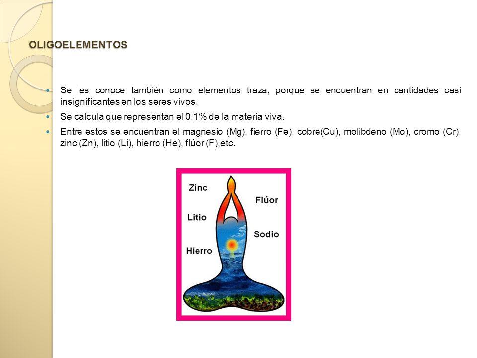 OLIGOELEMENTOS Se les conoce también como elementos traza, porque se encuentran en cantidades casi insignificantes en los seres vivos.