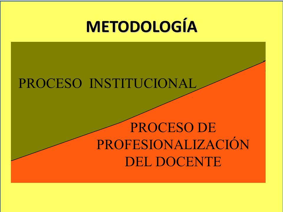 METODOLOGÍA PROCESO INSTITUCIONAL AUTORIDAD PROCESO DE