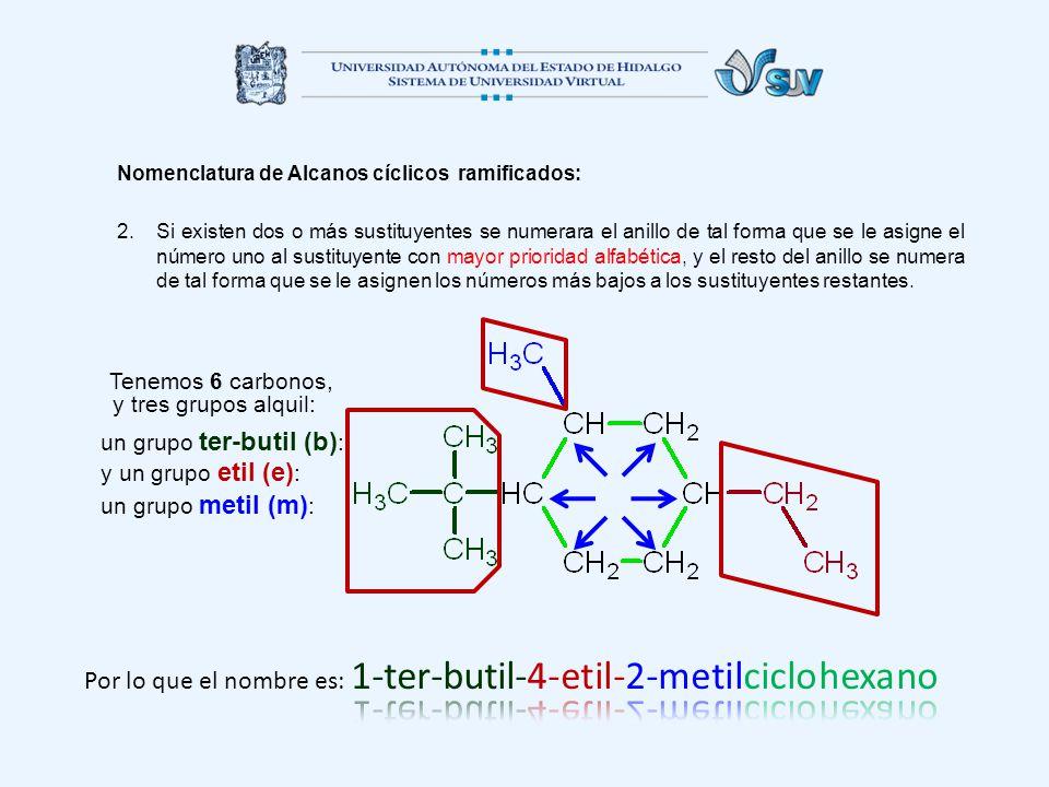 Por lo que el nombre es: 1-ter-butil-4-etil-2-metilciclohexano