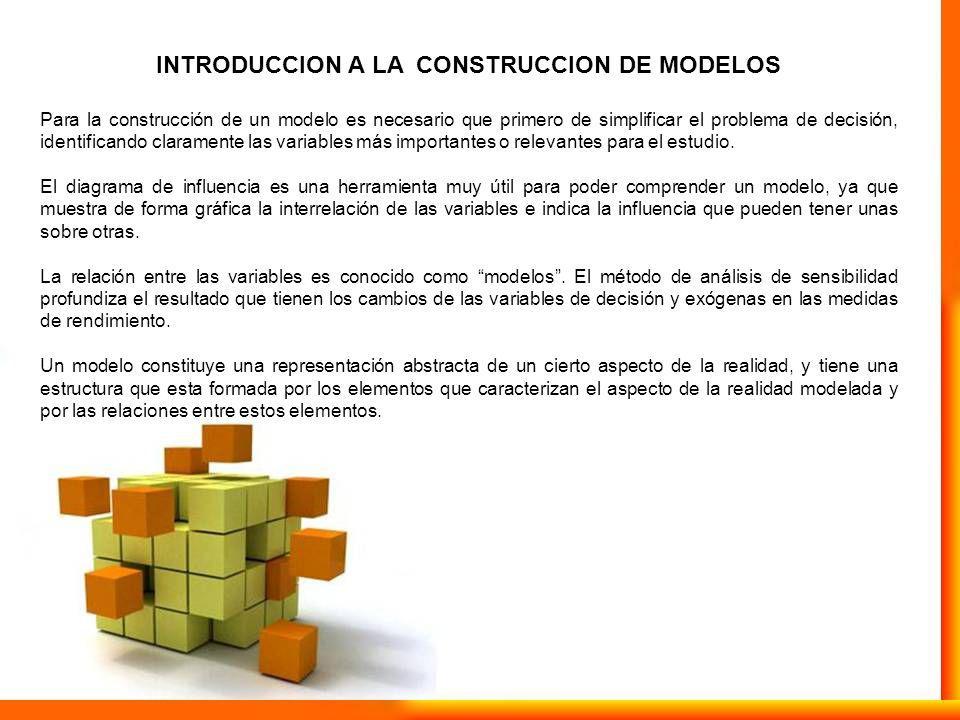 INTRODUCCION A LA CONSTRUCCION DE MODELOS