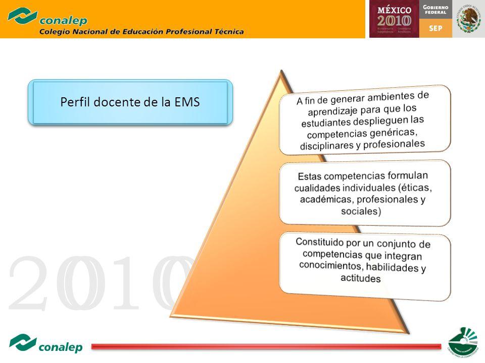 Perfil docente de la EMS