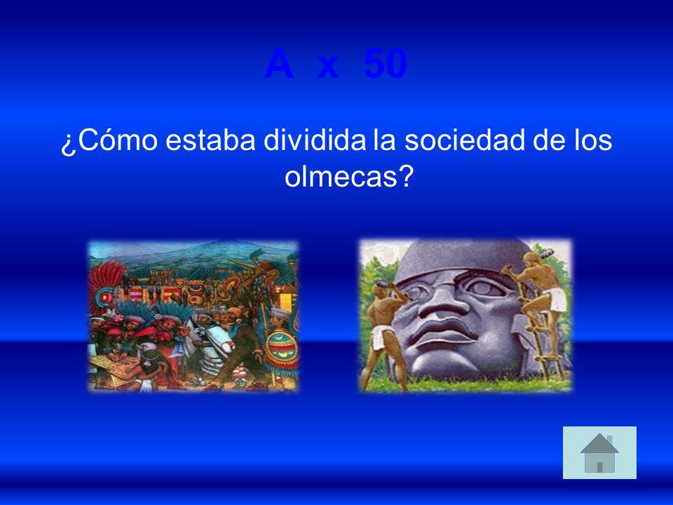 ¿Cómo estaba dividida la sociedad de los olmecas
